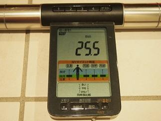 ダイエット15日目BMI