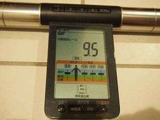 ダイエット28日内臓脂肪
