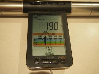 ダイエット39日体脂肪
