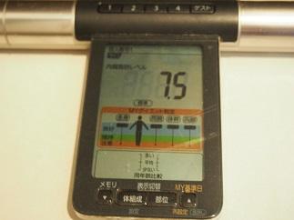 ダイエット85日目内臓脂肪